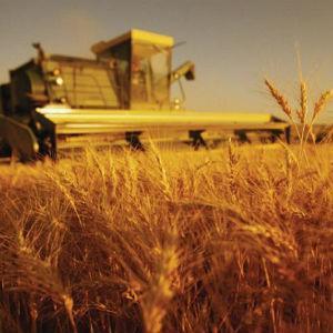 Sektor poljoprivrede i prehrambene industrije nema adekvatnu zaštitu ni kada je riječ o plasmanu roba, već su izloženi nelojalnoj konkurenciji zbog čega traže zaštitu od resornog ministarstva i Vlade RS, navodi Aleksandar Tomić.