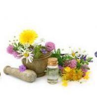 Sve zainteresirane kompanije koje se bave proizvodnjom i preradom ljekovitog bilja, meda i šumskih plodova mogu se prijaviti.
