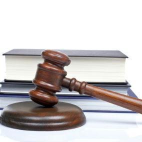 Zakon nije predvidio sudsku zaštitu predsjednicima raspuštenih skupština koje sada može raspustiti Narodna skupština RS, a na prijedlog Vlade.