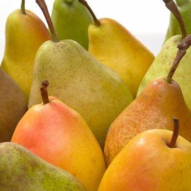 Prekomjeran uvoz sve više guši domaću proizvodnju, a za samo 11 mjeseci ove godine uvoz voća i povrća na tržište BiH je skočio za 17 miliona KM.