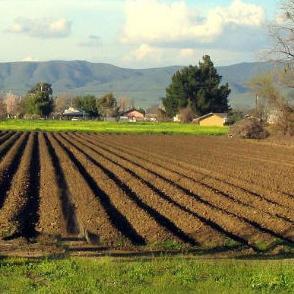 Osim poljoprivrednika, na forumu su sudjelovali domaći, regionalni i međunarodni stručnjaci.