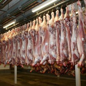 Za šest mjeseci ove godine iz BiH u Tursku izvezeno je 6.100 tona iskoštenog mesa, odnosno u bruto iznosu 14.000 tona, vrijednosti 70 miliona KM.