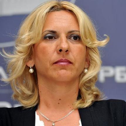 Potpredsjednik SNSD-a Željka Cvijanović izjavila je da će ruski kredit biti realizovan drugim modalitetom, bez angažmana institucija BiH.