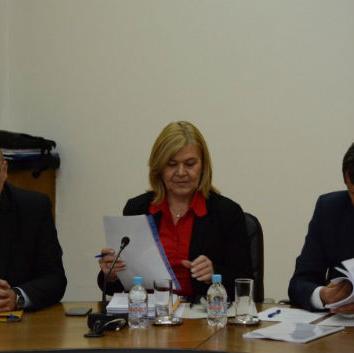 Članovi ESV-a su razmatrali radne materijale zakona o doprinosima, te zakona o porezu na dohodak.