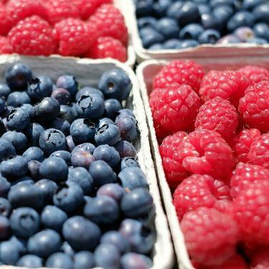 Prerađivači poljoprivrednih proizvoda iz BiH ove godine su od domaćih proizvođača otkupili više desetina hiljada tona voća, povrća i raznih žitarica.