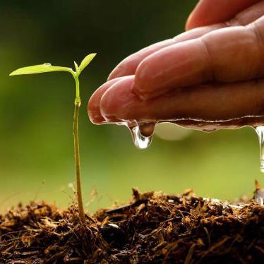 Sagovornici su se saglasili da će u narednom periodu glavni fokus biti na unapređenju konkurentnosti domaće poljoprivredne proizvodnje.