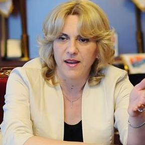 """Cvjanović kaže da u pregovorima o adaptaciji Sporazuma o stabilizaciji i pridruživanju """"treba pristupiti krajnje oprezno, jer prelaskom na novi režim, grupa proizvoda gubi zaštitu""""."""