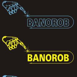 The BANOROB project is intended to establish a high level industrial related education within production engineering at University of Banja Luka with special focus on robotics and automation because this knowledge is essential in a long term perspective.