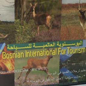 Nelegalne turističke agencije koje rade bez prijavljenih radnika, poreza, označenog radnog vremena  i nelegalni turistički vodiči stvaraju velike probleme turističkim radnicima.