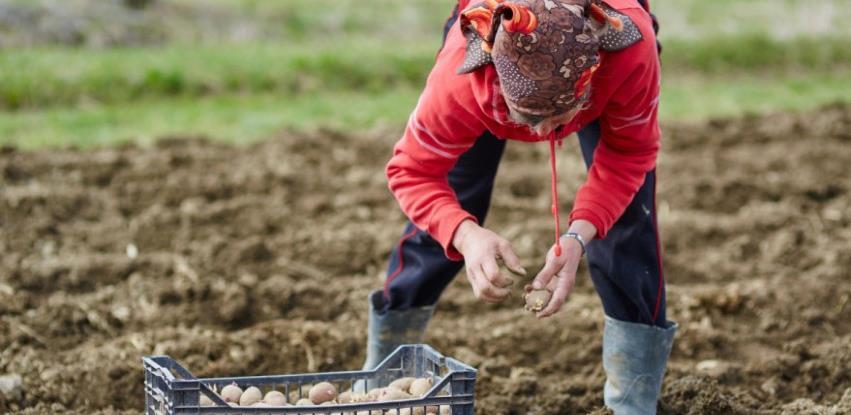 Pašalić: Dodatna sredstva za poljoprivrednike