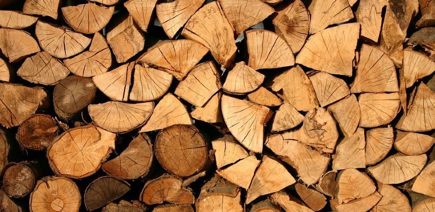Šteta od krađe šume u RS-u 820.000 KM