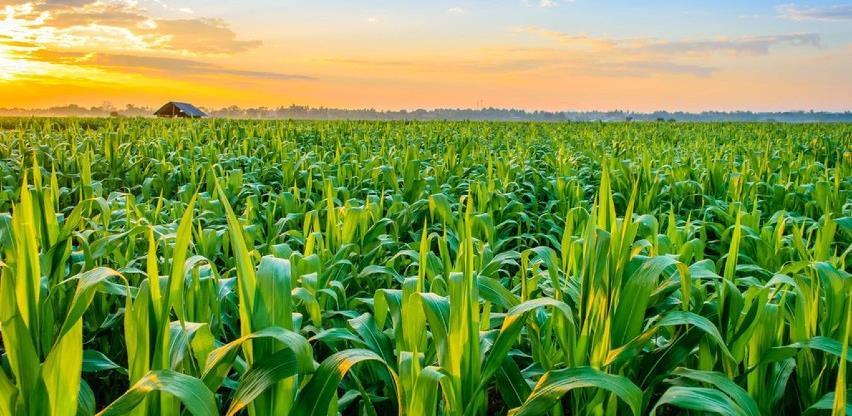 Isplaćeno 3.287.460 KM za podsticaje poljoprivrednicima u RS-u