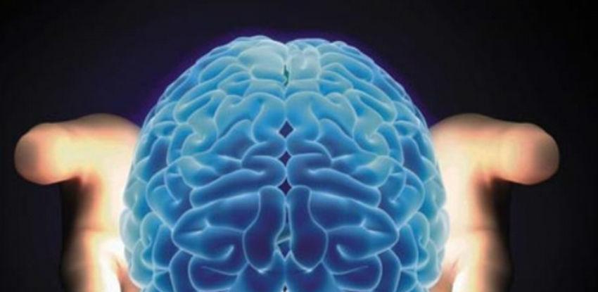 Da li mozak može da se regeneriše?