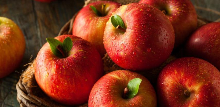 Šarović: Pooštrio procedure za izvoz voća i povrća u Rusku Federaciju