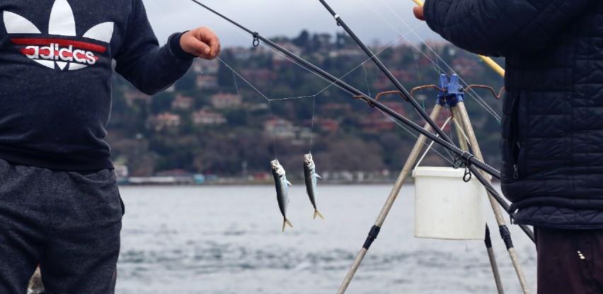 Gotovo polovica EU ribara zarađuje ispod minimalca