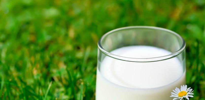 Crnogorci popili tri puta više mlijeka iz BiH nego cijela EU