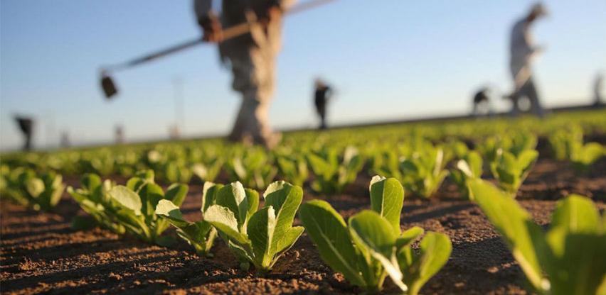U TK izmireno 3,8 miliona KM poljoprivrednih poticaja za 2018.