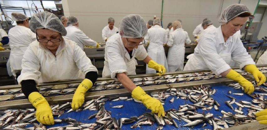 Korona zatvorila pogon za preradu ribe u Stocu