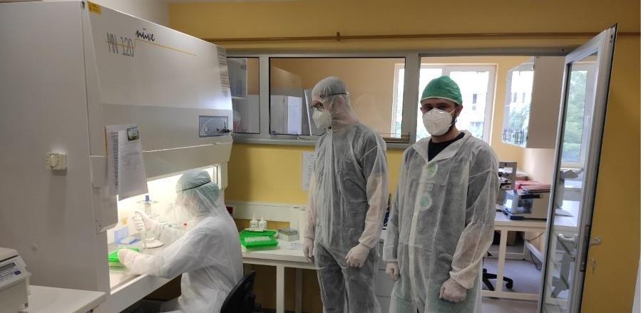 Izoliran prvi bosanskohercegovački soj virusa SARS-CoV-2
