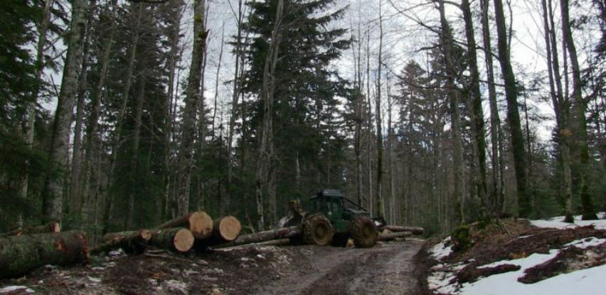 Šantić: Podstaći regionalno povezivanje u šumarstvu i drvnoj industriji