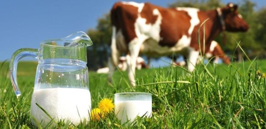 Realizovan ključni korak za izvoz mlijeka i mliječnih proizvoda u Kinu
