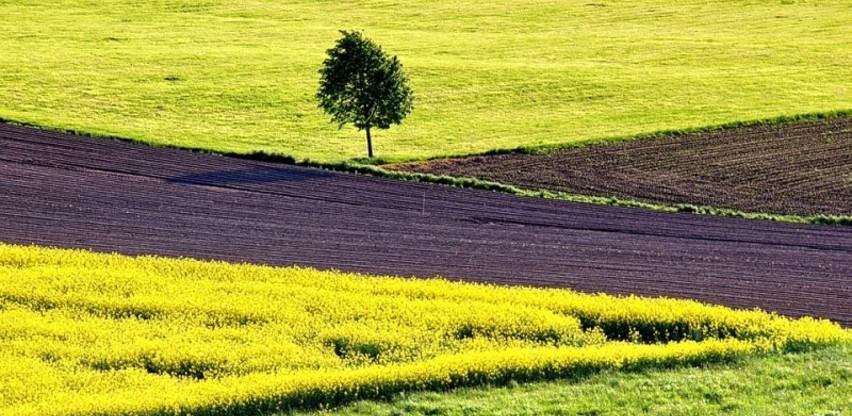 U BiH povećan otkupa industrijskog bilja za 102,8 odsto