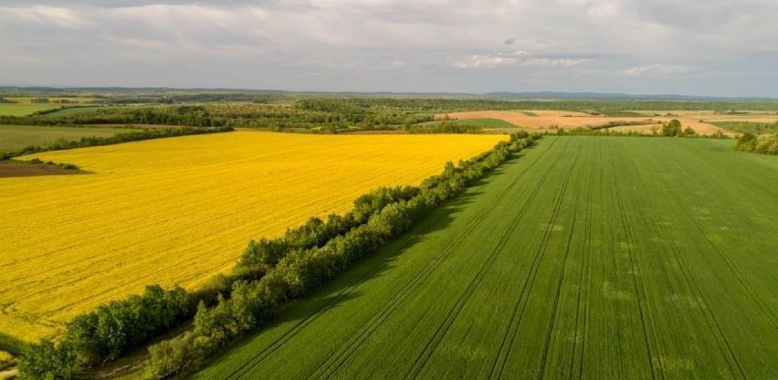 Ljubuškim poljodjelcima isplaćeno 200.000 maraka potpore za proljetnu sjetvu
