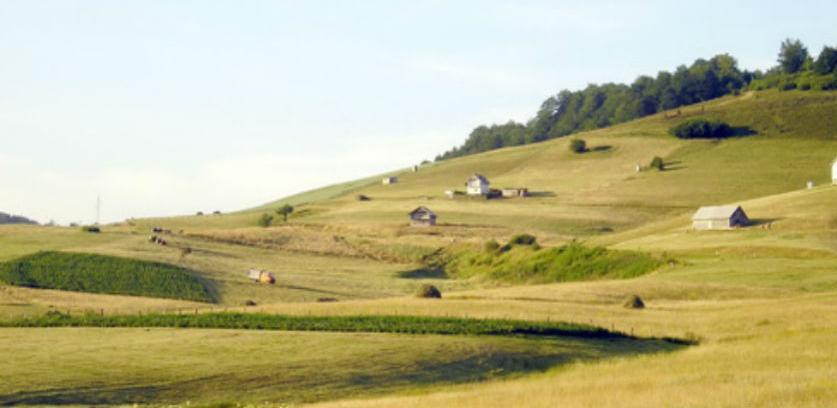 Općina Novi Travnik planira izgradnju stočnog groblja na Rostovu