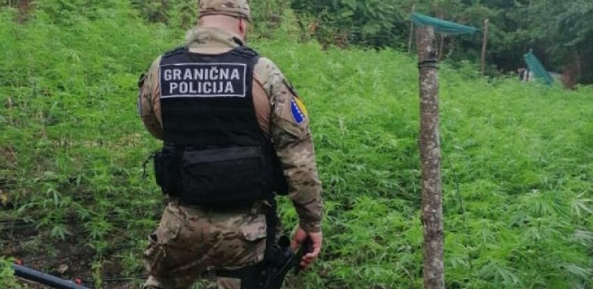 """Akcija """"Escobar"""": U Velikoj Kladuši zaplijenjena velika količina droge"""