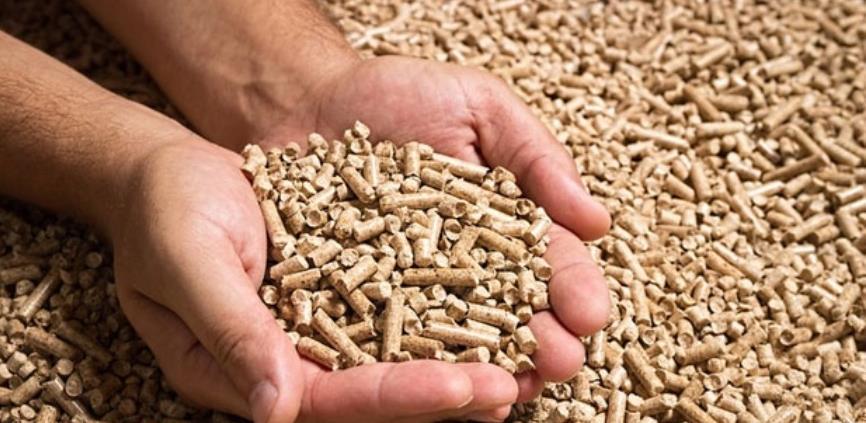 Investitor iz Srbije bi u Bosanskom Petrovcu proizvodio energiju iz biomase