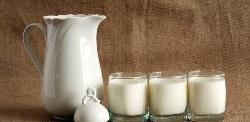 Magareće mlijeko i do 100 KM za litar, proda se svaka kap