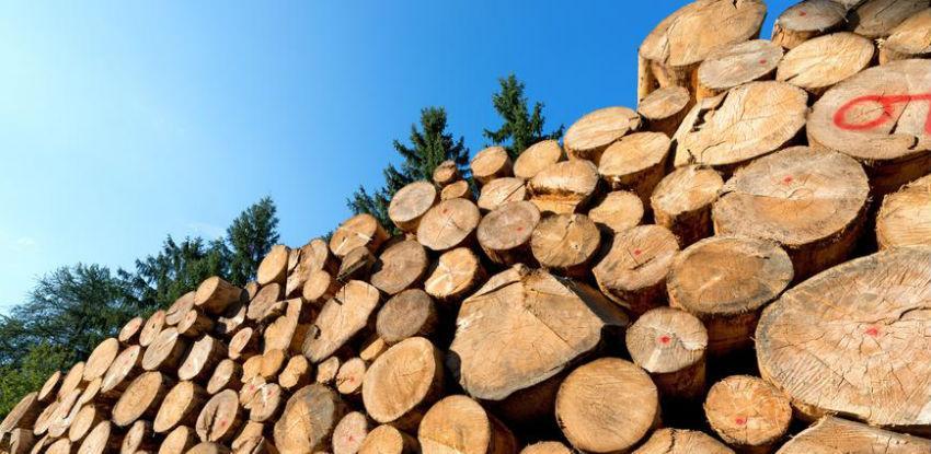 Prošlogodišnja proizvodnja šumskih sortimenata manja za 4,83 posto