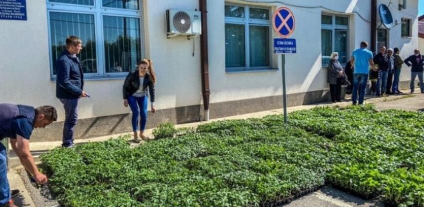 Prave pijacu na Trebeviću, prodavat će samo domaće povrće