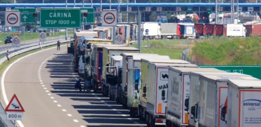 Izvoz šljiva i kornišona iz BiH moraju prijaviti 24 sata ranije