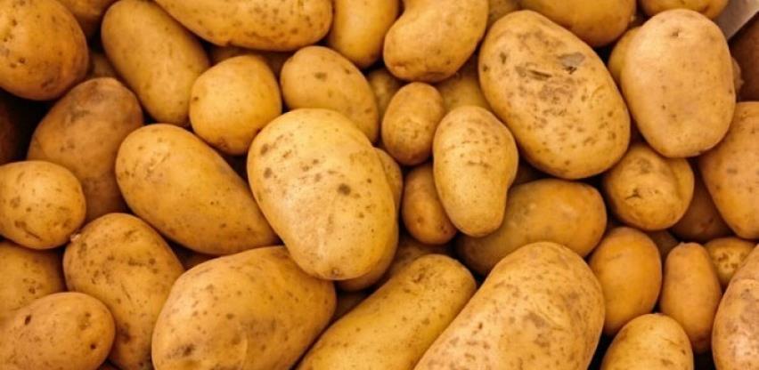 Propadaju milioni tona krompira zbog zatvorenih restorana