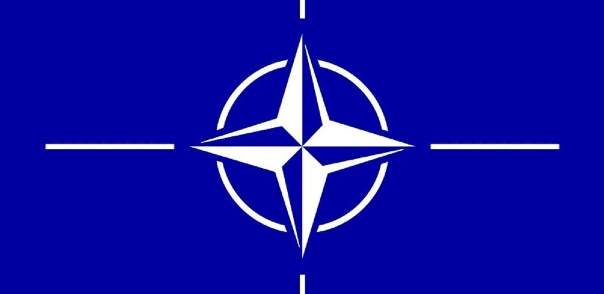 Iskustva Hrvatske u NATO javnim nabavkama: Transparentnost i specifičnost