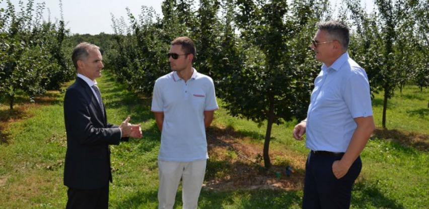 Na području Brčko distrikta 1.200 hektara zasađeno voćem