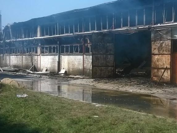 """Požar u Zavidovićima """"spalio"""" više od 200 radnih mjesta"""