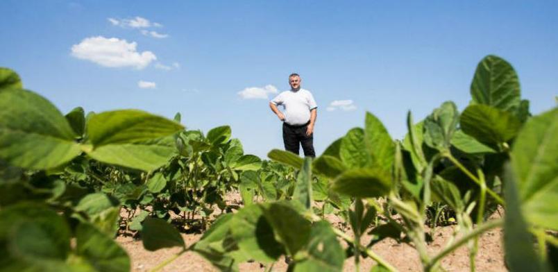 Objavljen poziv: Za podršku primarnoj poljoprivrednoj proizvodnji 1,7 mil. KM
