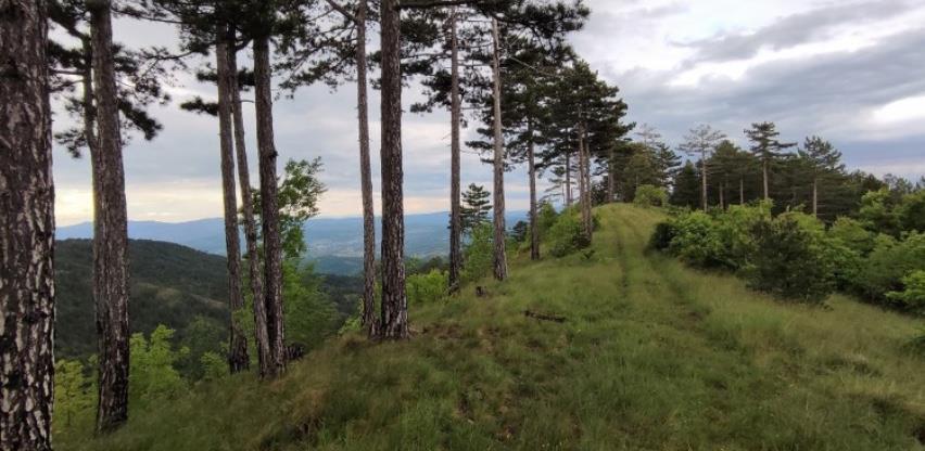 """Znanstveno-istraživački kamp """"Matinski vis 2021"""" od 28. jula do 1. augusta"""