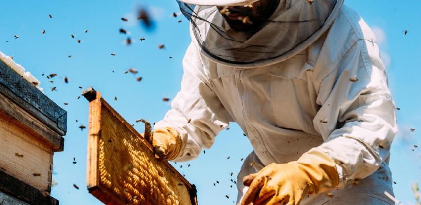 Loš početak sezone za pčelare u Hercegovini