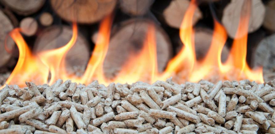 BiH najbrže rastuća ekonomija u korištenju biomase u Evropi