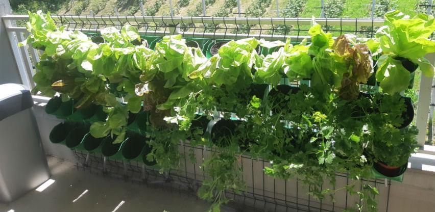Razvoj urbane poljoprivrede na području općine Novi Grad Sarajevo