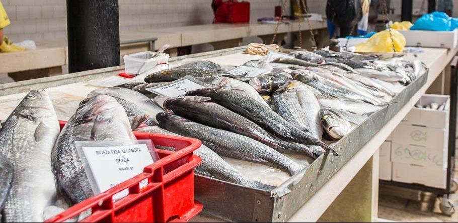Bosna i Hercegovina je dobila saglasnost za izvoz ribe u Rusiju