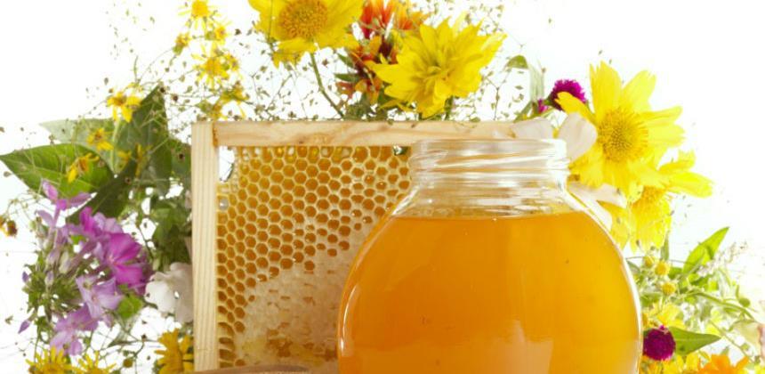Sektor ljekovitog bilja, šumskih plodova i meda zabilježio izvoz od 41 mil. KM