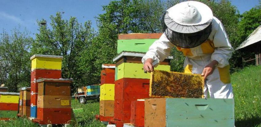 Pčelarstvu kao posebnoj grani poljoprivredne proizvodnje dati veću podršku