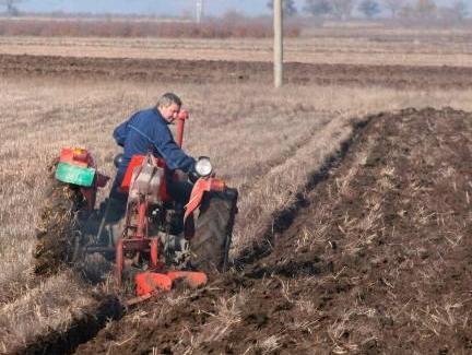 Svjetska banka: Za poljoprivredu RS 15 miliona KM