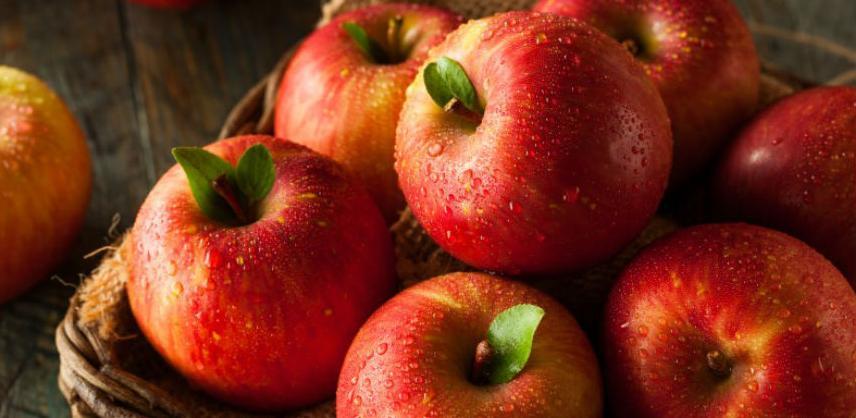 Pozitivne naznake nastavka izvoza jabuka u Rusiju
