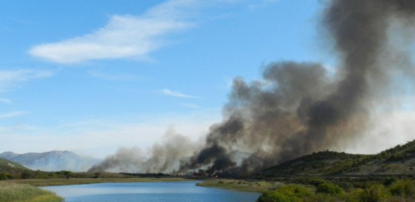 Šteta od požara na Hutovom blatu oko milijun KM, ugrožen cijeli eko sustav
