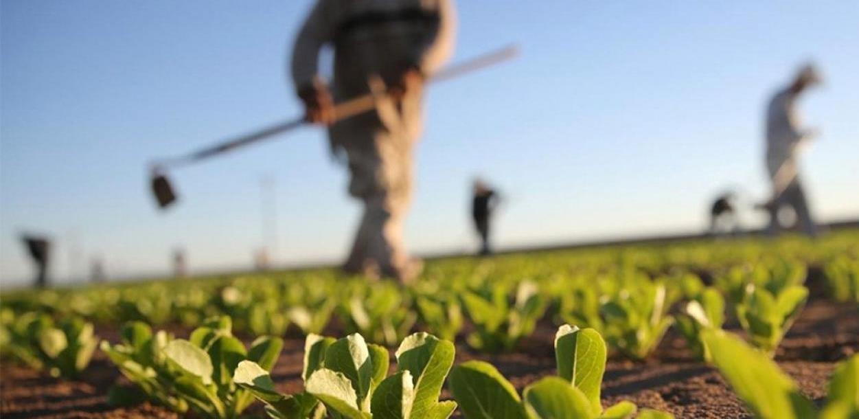 Poljoprivrednici pozdravljaju mjere Vlade FBiH, kantoni nek urade svoj dio posla